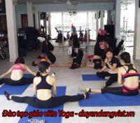 Đào tạo giáo viên Yoga – Huấn luyện viên Yoga