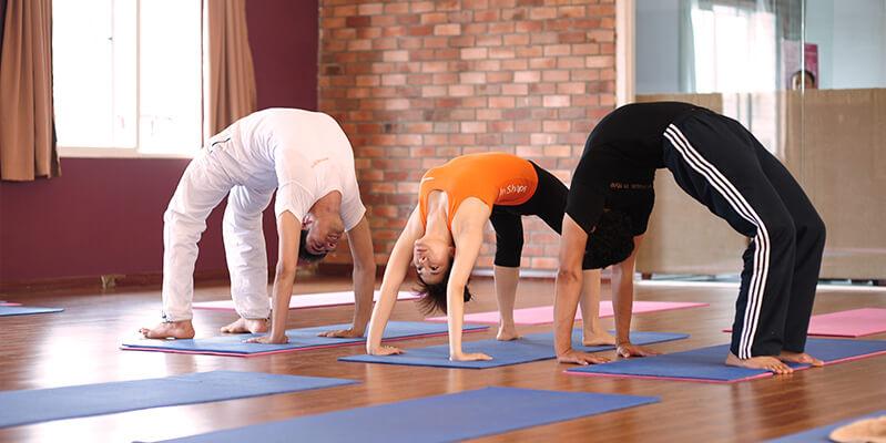 Yoga giải pháp sức khỏe cho dân văn phòng