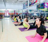 Trung tâm đào tạo nghề giáo viên Yoga chuyên nghiệp tại Hà Nội